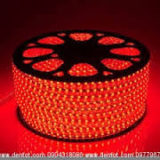 Đèn led dây LDD01 Duhal