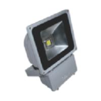 Đèn pha led 80W POLH8065 Paragon